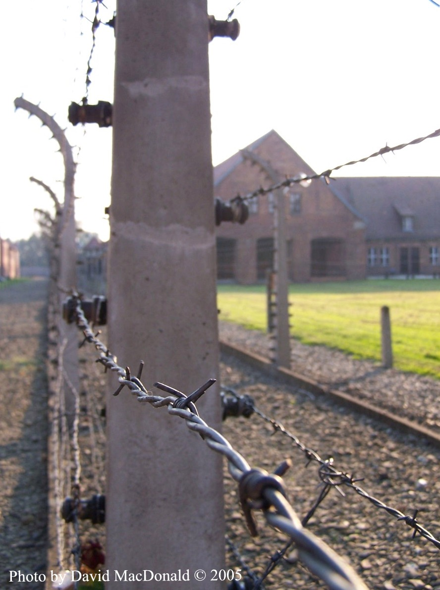 research essay on auschwitz